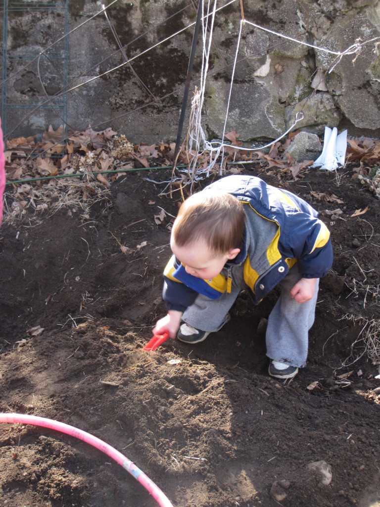 Todler digging in the dirt