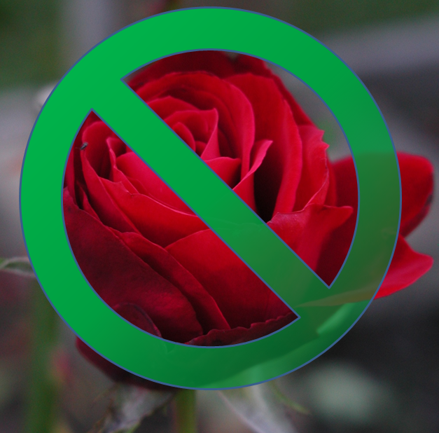 Red rose with a green No symbol