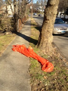 plastic bag remains after  tree is removed