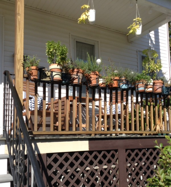 herbs in pots on a front porch railing