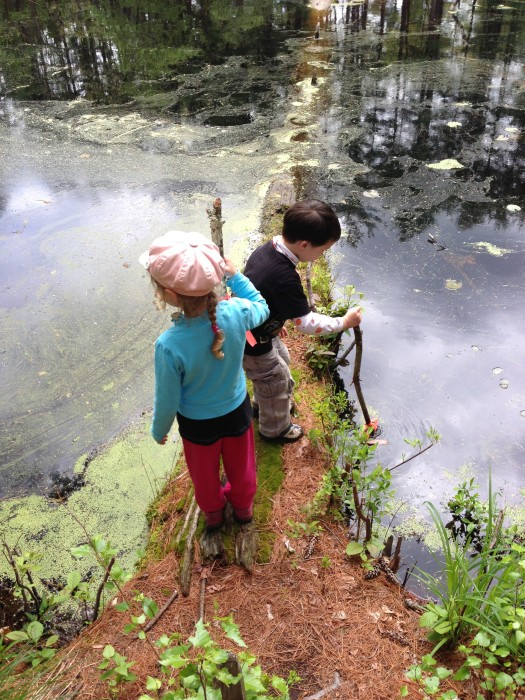 Two 5 year olds walking out onto fallen tree in a pond.