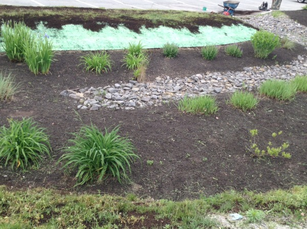 Rain garden under construction in Portland, ME