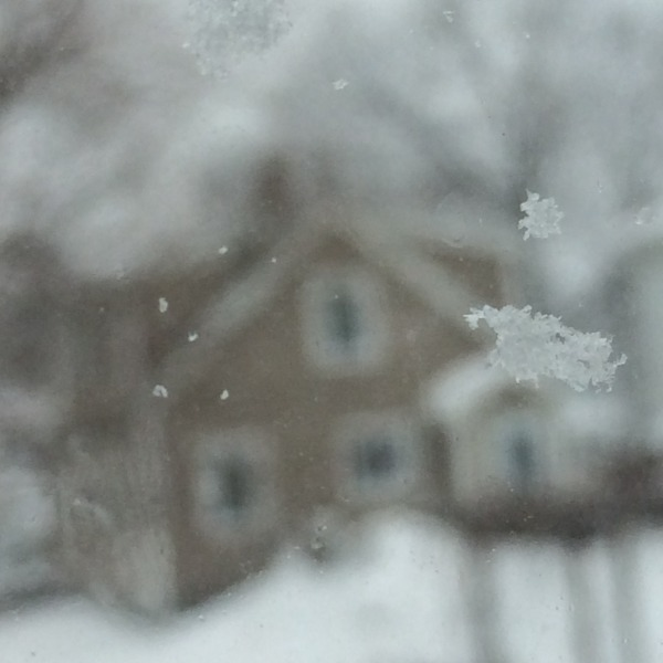 snowflake in front of gingerbread house