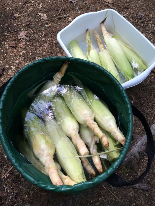 corn with husks soaking in buckets of water