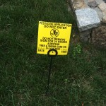 Your Perfect Lawn Makes Me Sick