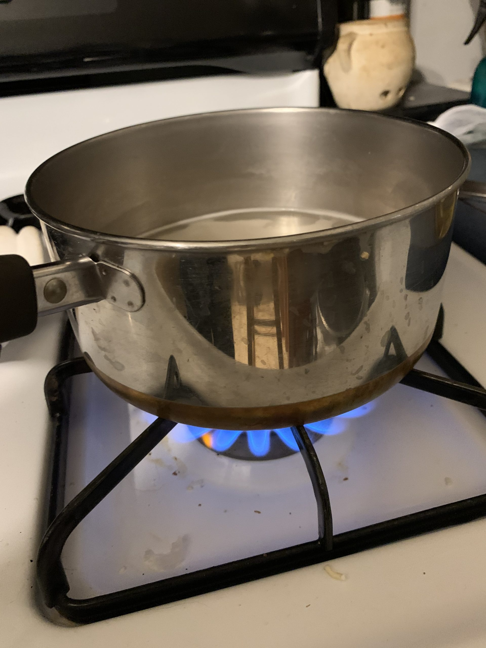 pot cooking over gas