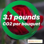 red rose with green circle and slash with text 3.1 pounds CO2 per bouquet